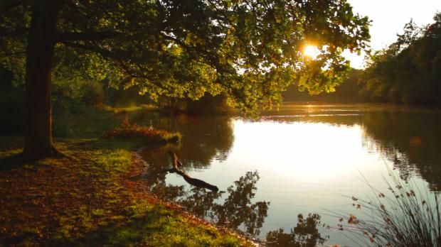 La nature est omniprésente. Elle révèle toute sa beauté à chaque moment de la journée.