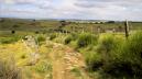 La traversée de l'Aubrac. Un endroit historique du chemin en France.